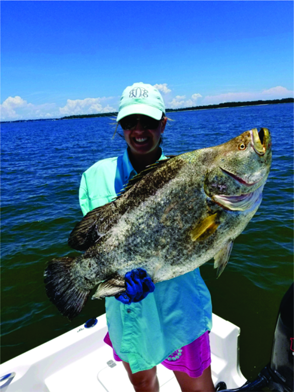 Image of Tripletail
