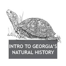 Georgia's Natural History