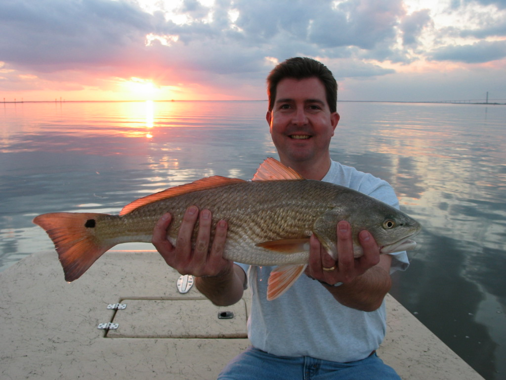 Photo of angler holding a red drum with sunset in the backgroun