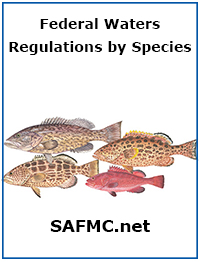 SAFMC Fishing Regs book