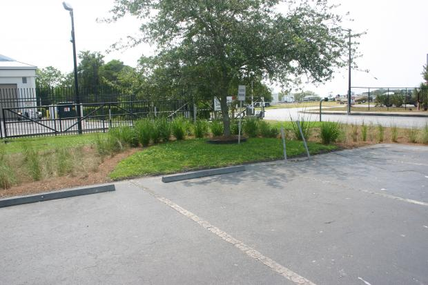 This is a photo of the bioswale at the Coastal Resources Headquarters.
