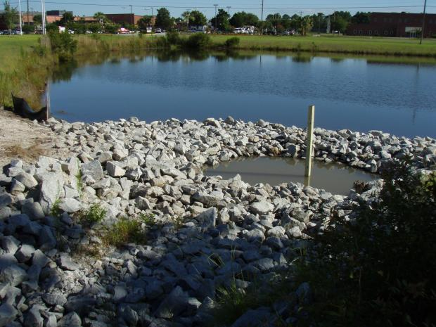 This is a photo of the forebay of the Golden Isles Career Academy stormwater pond.