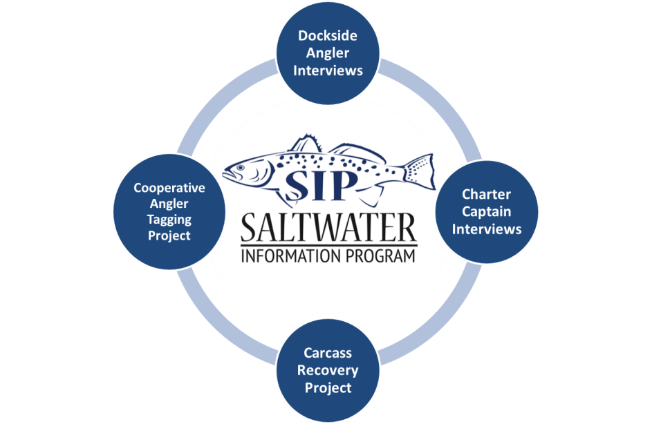 Graphic depicting the four components of the Saltwater Information Program.